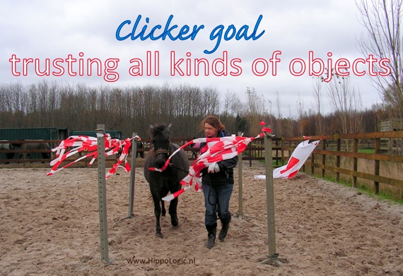 despooking training can be a great clicker goal