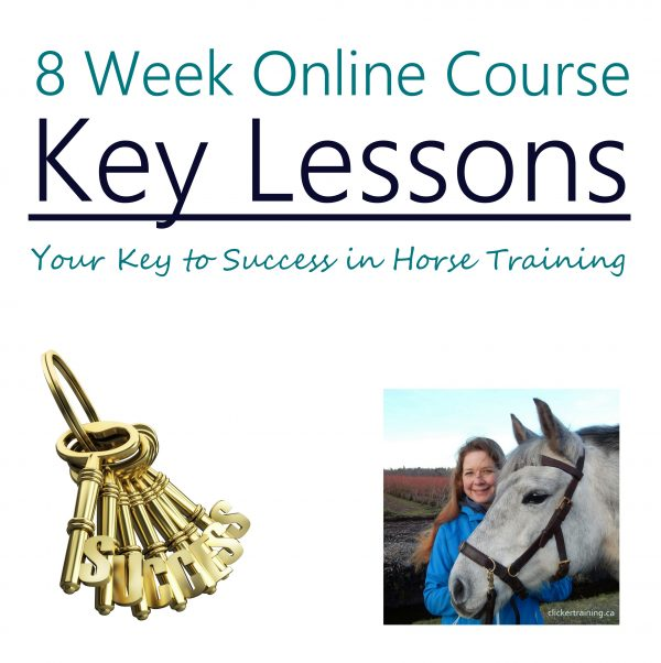 Learn to clicker train your horse