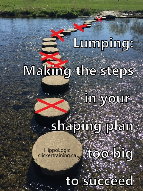 Lumping in clicker training means that you make the steps too big for your horse to be successful