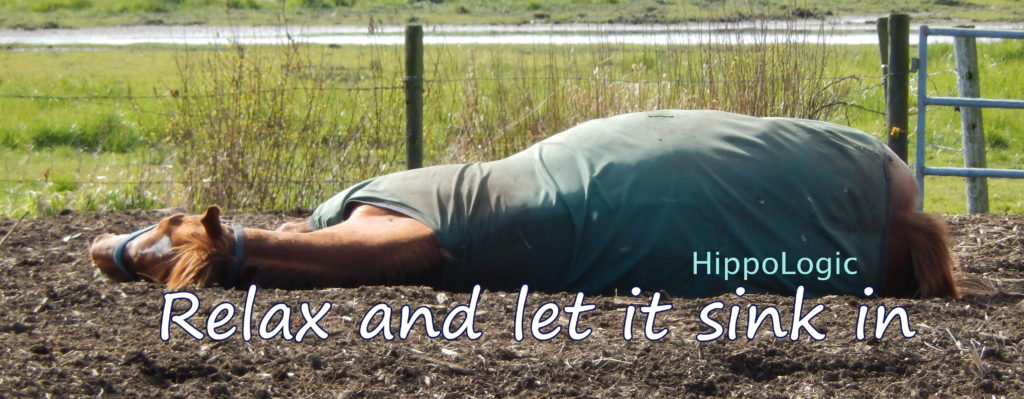 Don't stress out about what other horse people say and think. Relax