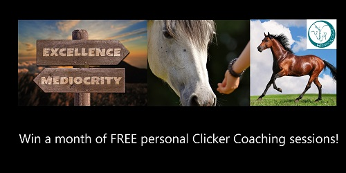 Win a month of FREE personal Clicker Coaching sessions with HippoLogic