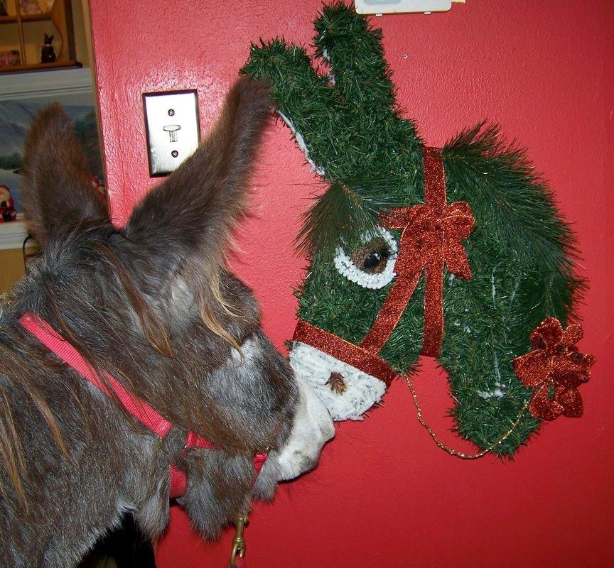 donkey wreath