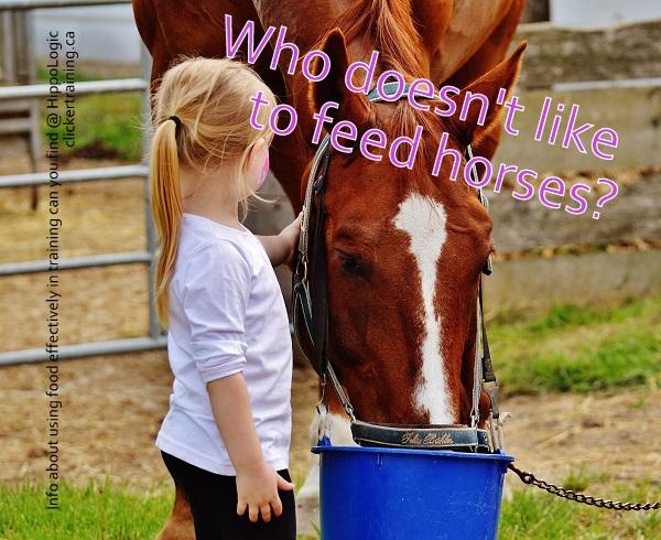 _everybodylikestofeedhorses_hippologic