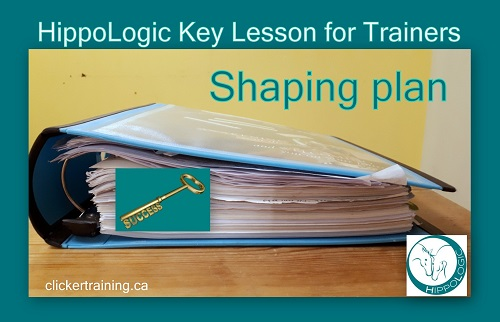 _Key Lesson for Trainers_shaping plan clickertraining hippologic