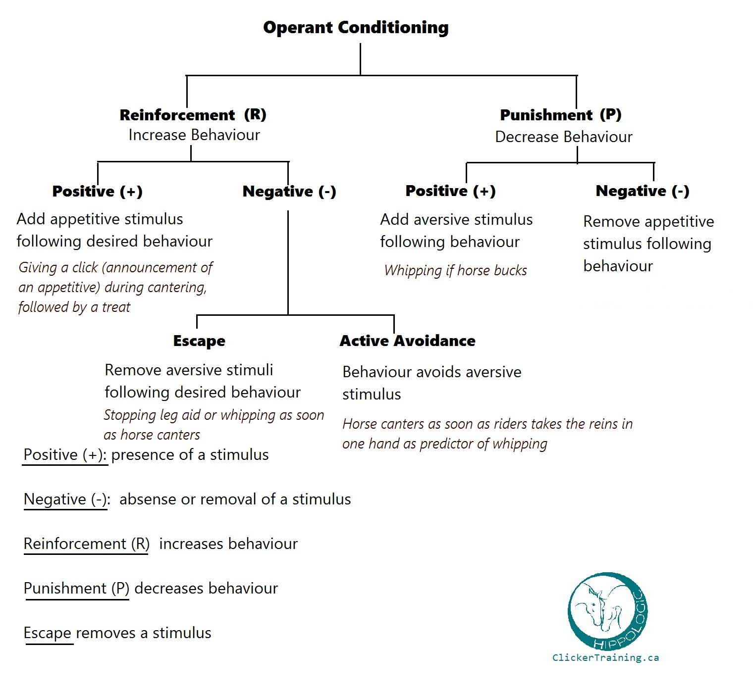 Operant conditioning Horse Training_Hippologic