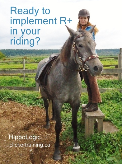riding with clickertraining hippologic