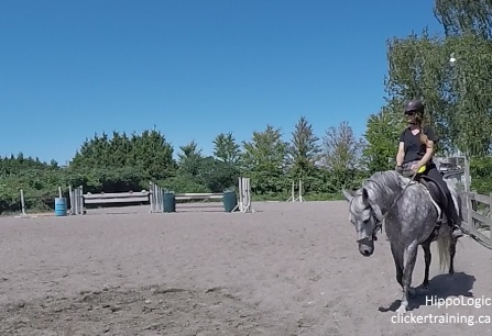 riding_with_the_Clicker_clickertraining_hippologic