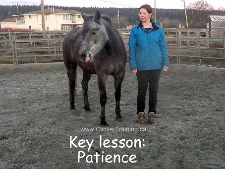 This is what Key Lesson Patience looks like in the early stages of training