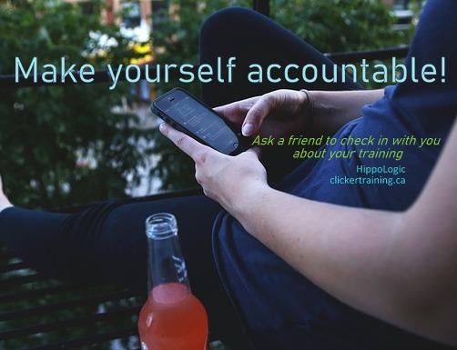 accountability hippologic clickertraining