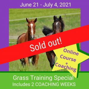 Grass Training Special SOLD OUT