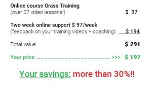 Amazing package deal with personal online support for two whole weeks!