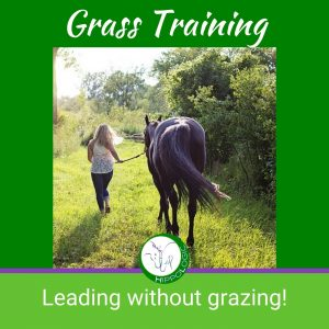 HippoLogic Grass training