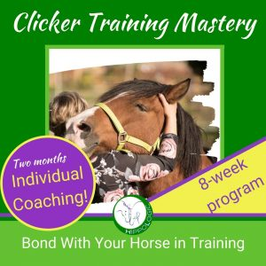 Two months of individual coaching in this online course