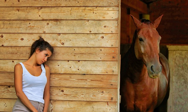 Horse training can really lead to frustration and desperation if you can't overcome your struggles