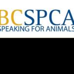 Rehabilitation trainer and speaker at BCSPCA