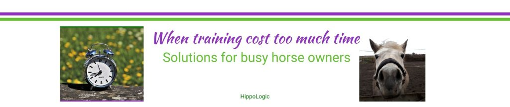 Solutions for busy horse owners that want to enjoy their horse more
