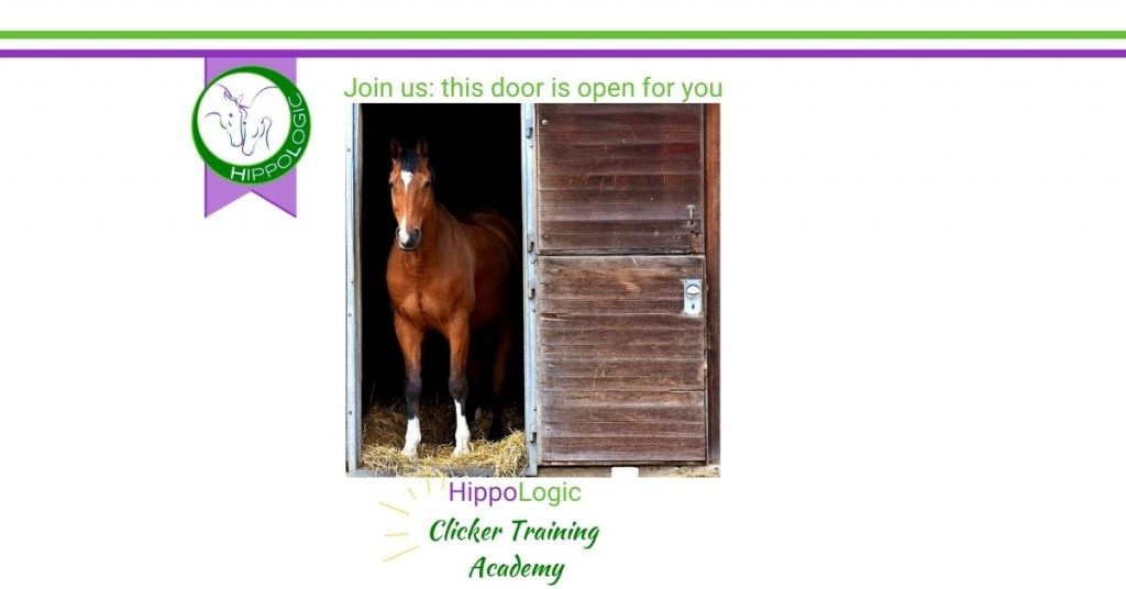 Secret door to the HippoLogic Clicker Training Academy