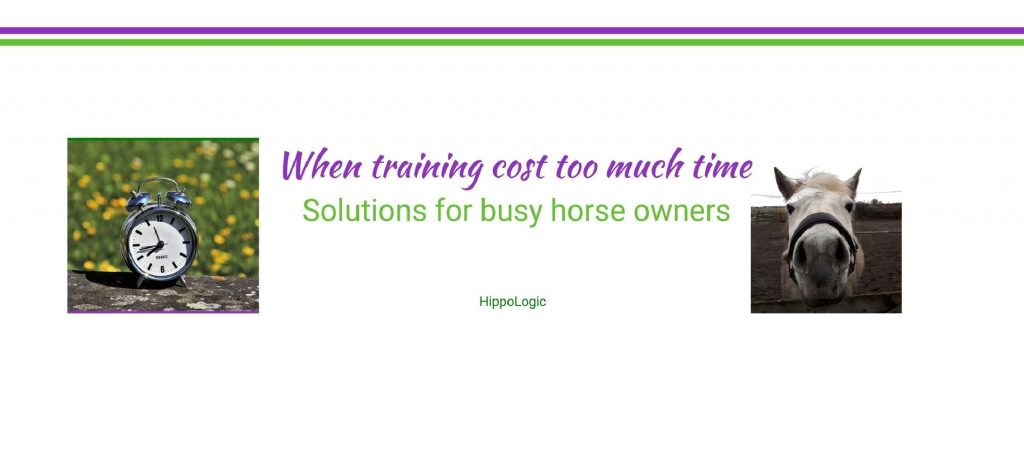 When training cost too much time_soltutions_hippologic clicker training